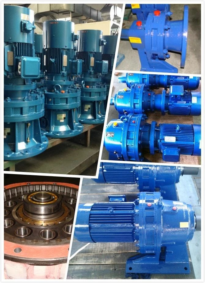 BW/BWD/XW/XWD/BL/BLD/XL/XLD planetary cycloid pinwheel reducer/cycloidal gearbox